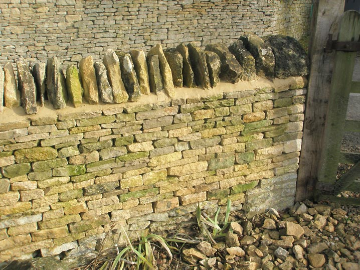Dry Stone Waller Cotswolds