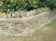 Semi Dressed Dry Stone Wall